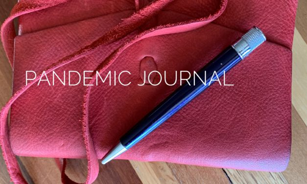 Journal of One Day: Safer at Home